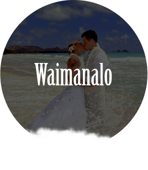 beach wedding waimanala oahu hawaii