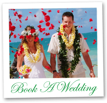 book-wedding-box-D