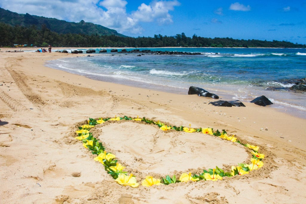 sweet-hawaii-anahola-beach-wedding-kauai